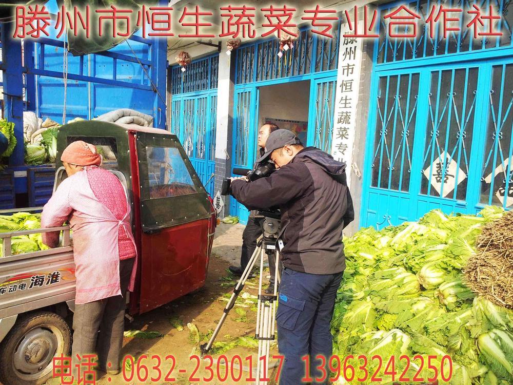 山东省滕州市恒生蔬菜专业合作社